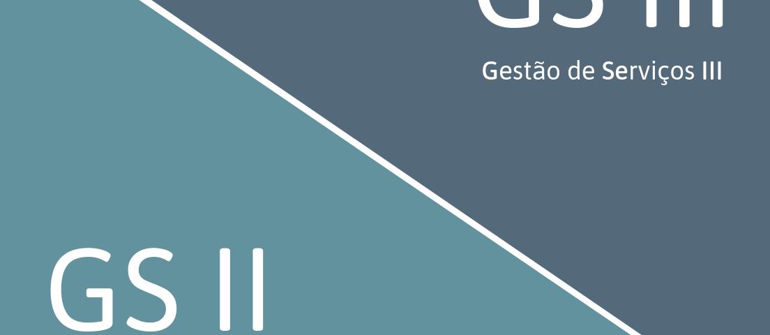 gs-i-4